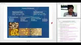 видео ПЦР диагностика туберкулеза у детей и взрослых