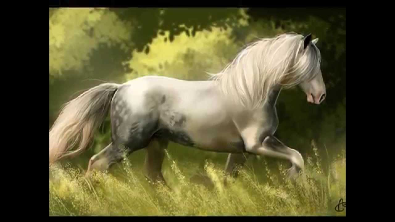 Anime Horse