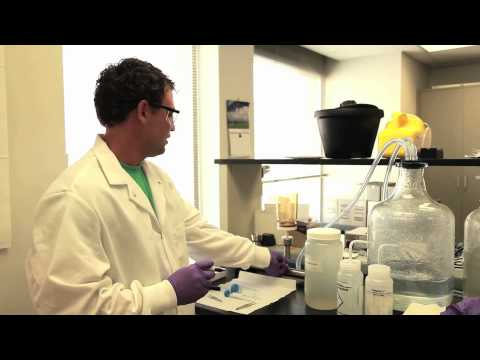 Filtering Water Samples for eDNA Analysis