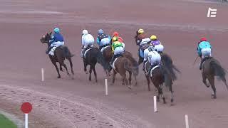 Vidéo de la course PMU PRIX LE LOIR