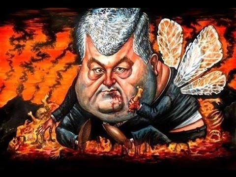 5,000+ killed in Ukraine: UN concerned, Donetsk rebel leader talks of 'offensive'