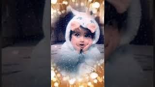 لا مابشبع ضم لابوس ولاشم اجمل اغاني علي الديك