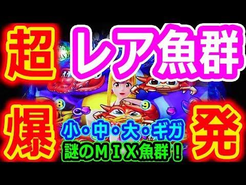 『CR大海物語4 ㉔』悶絶★超レア魚群★からの大爆発!