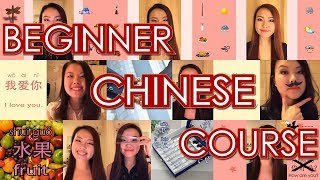 Learn Chinese with Yi Zhao