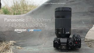 Panasonic Lumix S 70-300mm F4.5-5.6 Macro OIS overview