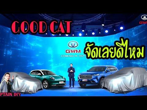 ORA goodcat เตรียมวางขาย  รอ หรือ ไม่รอ อย่าเพิ่งรีบซื้อรถยนต์ไฟฟ้า ถ้ายังไม่ดูคลิปนี้ l EV Story