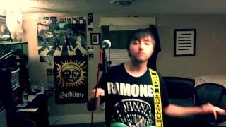 """What If The Allman Brothers Were a Punk Band"" Ramblin' Man Pop Punk Cover"