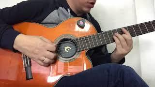 Terry - не о любви на гитаре, аккорды, разбор