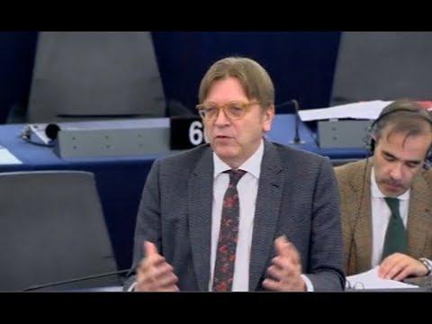 Guy Verhofstadt 17 Jan 2018 plenary speech on the Future of Europe
