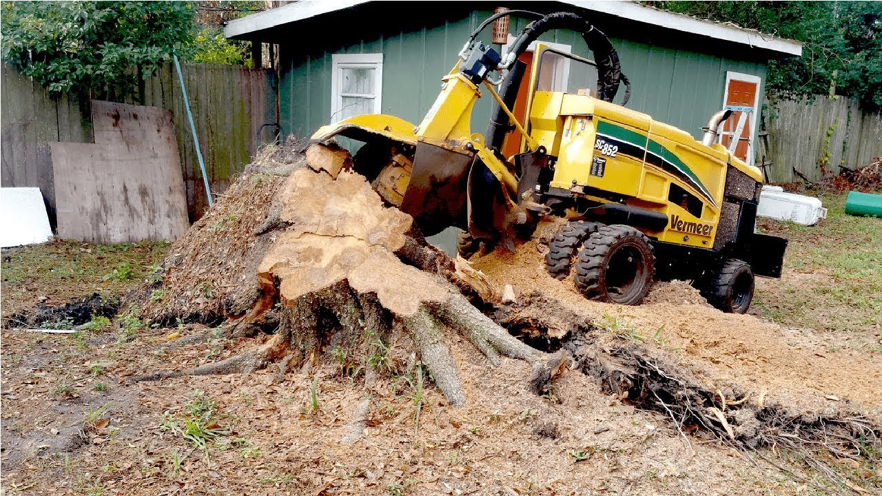 Extreme Fast Tree Stump Grinder Modern Technology, Intelligent ...
