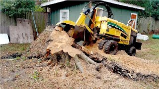 Extreme Fast Tree Stump Grinder Modern Technology, Intelligent Forestry Equipment and Mega Machines