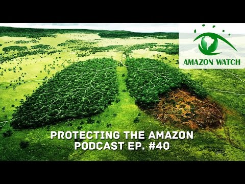 Protecting the Amazon with Adam Zuckerman From Amazon Watch || Podcast Ep.41