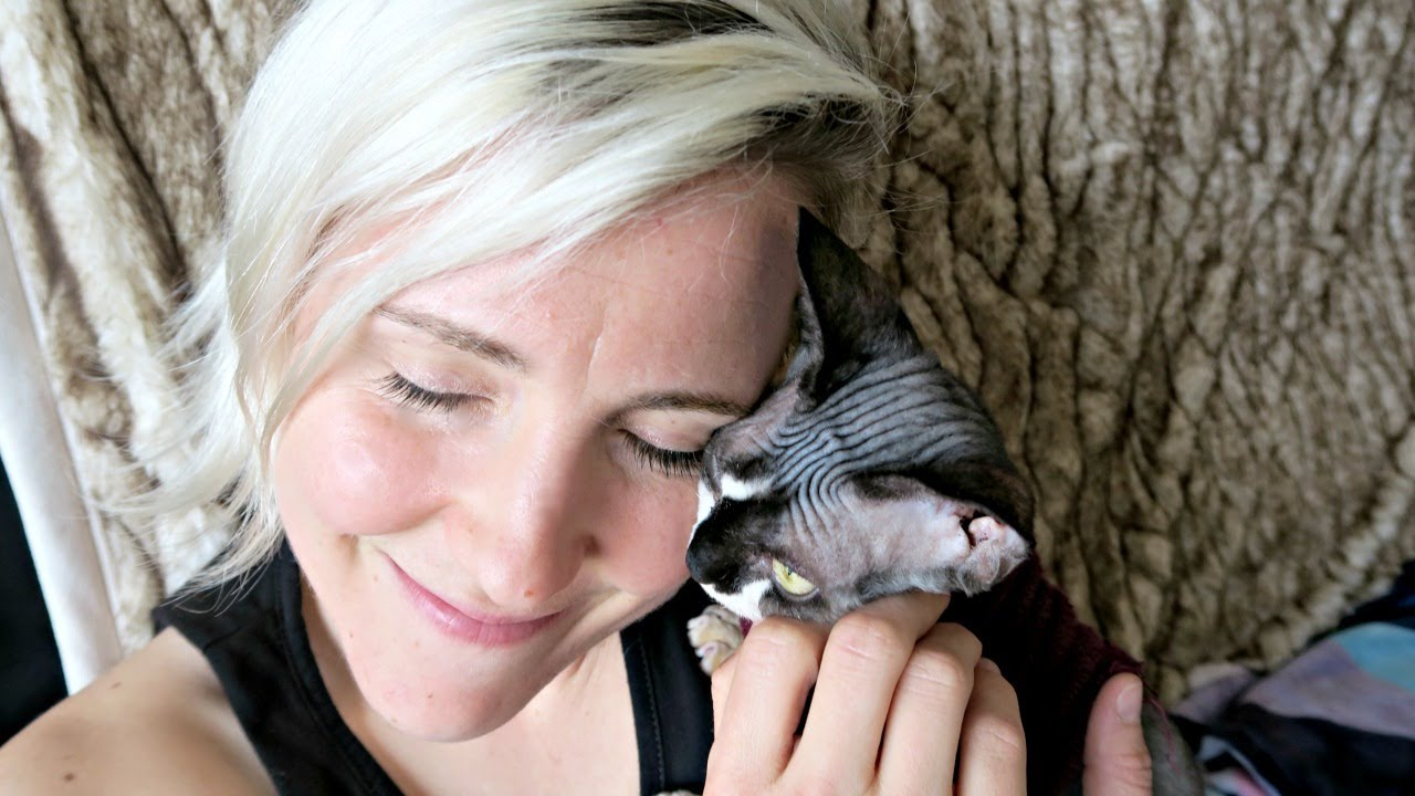 A brief history of hannah hart meet kitten charles - Prenom hannah ...