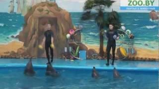 Дельфинарий Немо в Минске!(http://zoo.by/?p=7387 В Минске открылся дельфинарий «НЕМО»!, 2011-12-10T16:18:54.000Z)