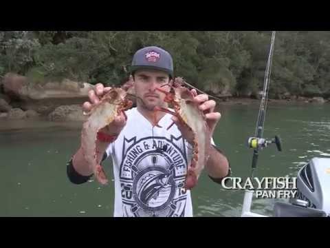 Fishing & Adventure Season 3 Ep 8 - WHITIANGA