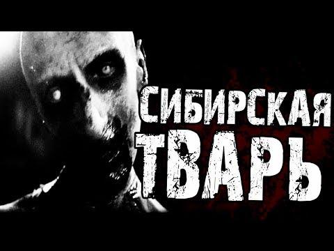 Страшные истории на ночь   - СИБИРСКАЯ ТВ*РЬ... - Видео онлайн