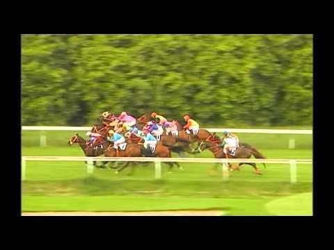 Danthai NewSeason #ม้าแข่งชิงถ้วยCBM ปี 2011
