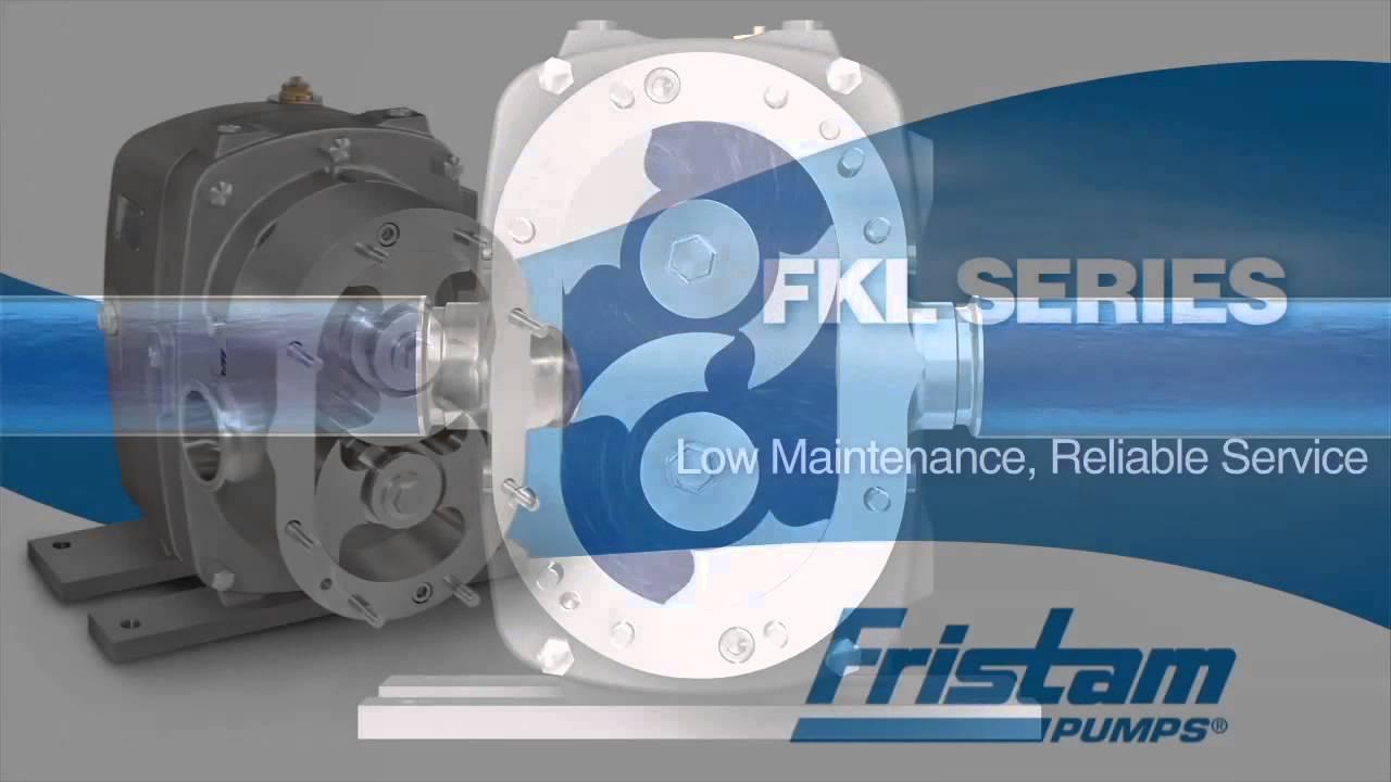 Fristam FKL Series Positive Displacement Pump