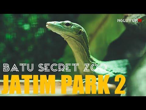 batu-secret-zoo---jatim-park-2-batu