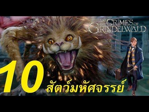 10 สัตว์มหัศจรรย์ใน Fantastic Beasts: The Crimes of Grindelwald