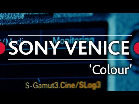 Sony Venice Review  • Ep.04 - 'Colour'