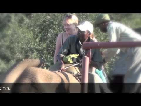 Abenteuer Malawi. Folge 5: Elephantwalk