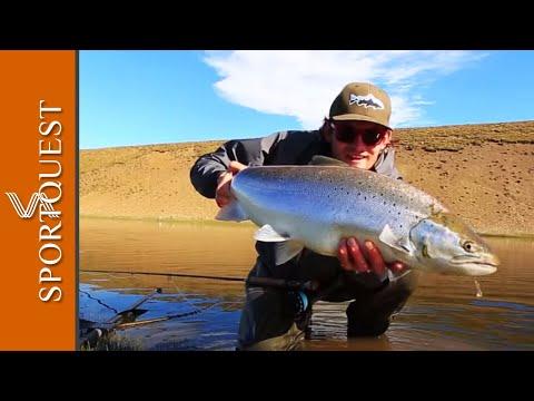 Sea Trout Fly Fishing Las Buitreras Argentina
