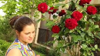 видео Болгария, отдых в Поморие 2018. Погода в Поморие, температура воды и воздуха. Туры в Поморие цены 2018. Все включено