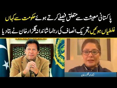 پاکستانی معیشت سے متعلق فیصلے کرتے ہوئے حکومت سے کہاں غلطیاں ہوئیں، تحریک انصاف کی رہنما نے بتا دیا