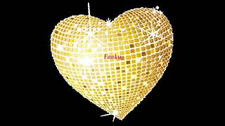 Funky Disco House 7.5 (Noel
