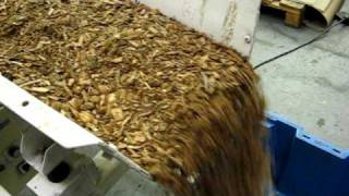 Controlled Mass Flow (wood chip) - Vibrating Feeder - Applied Vibration Ltd