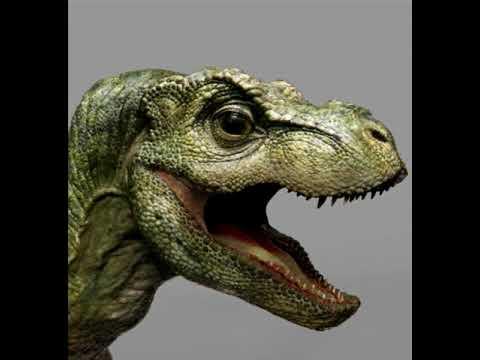 Baby T-Rex Sounds Jurassic Park - YouTube