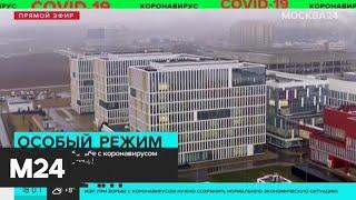 Какие меры по борьбе с коронавирусом принимают в Москве - Москва 24