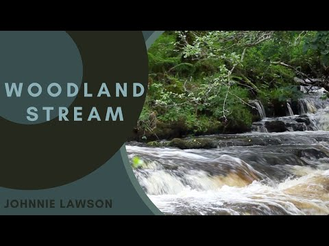Nature Sounds Relaxation Meditation Sound of Water Birds Singing Johnnie Lawson Above Folly Falls