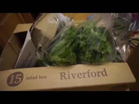 Riverford Organic Farms- Review!