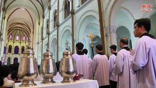 Vương Cung Thánh Đường Đức Bà Sài Gòn: Thánh lễ Truyền Dầu 2019