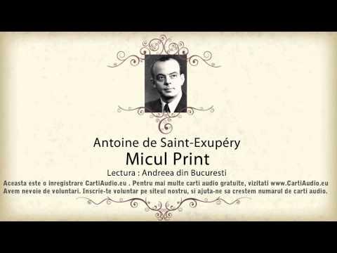 Antoine de Saint-Exupéry - Micul Print