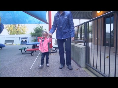 Leveling the Playing Field: Support Students and Adults Who Are Visually Impaired