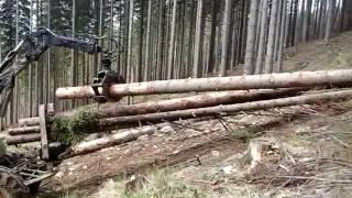 Maszyny leśne