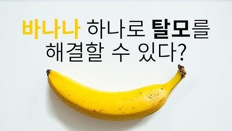 바나나 하나로 10분만에 탈모를 해결할 수 있다?_채널A_돈나와라뚝딱 2회
