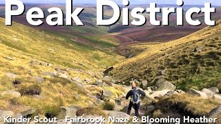 Peak District Walk - Kinder Scout - Fairbrook Naze & Blooming Heather