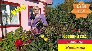 Осенний сад Людмилы Ивановны