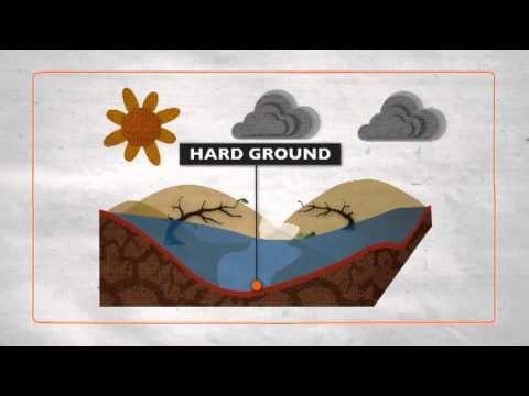 Floods explained