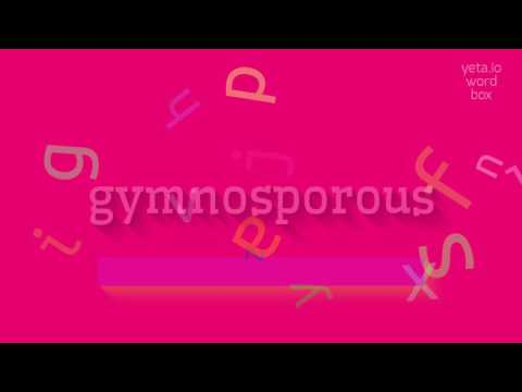 "How to say ""gymnosporous""! (High Quality Voices)"