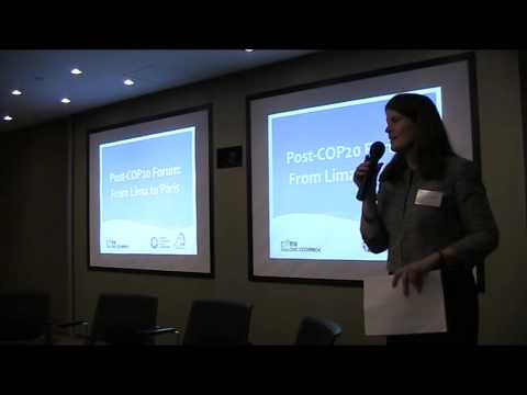Post-COP20 Forum: From Lima to Paris  - Opening Remarks