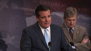 Cruz Introduces Legislation to Stop Separation