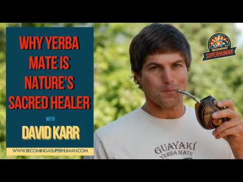 Ep. 104: Why Yerba Mate is Nature's Sacred Healer w Guayaki's David Karr