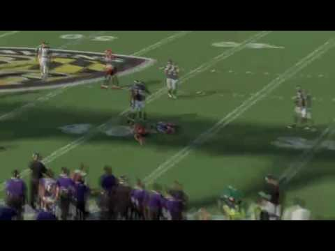 Baltimore Ravens: Playoffs 2009