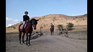 Конные прогулки, уроки верховой езды. с. Плиево. Ингушетия.