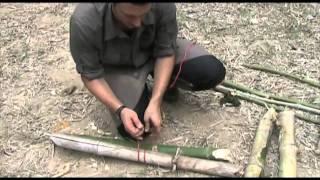 Jungle Survival Folge 4: Die Tropenliege